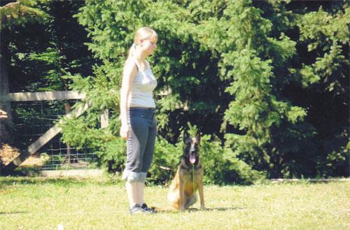 Éducation canine toutes races